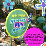 Our Five Favorite Atlanta Attractions for Spring Break!