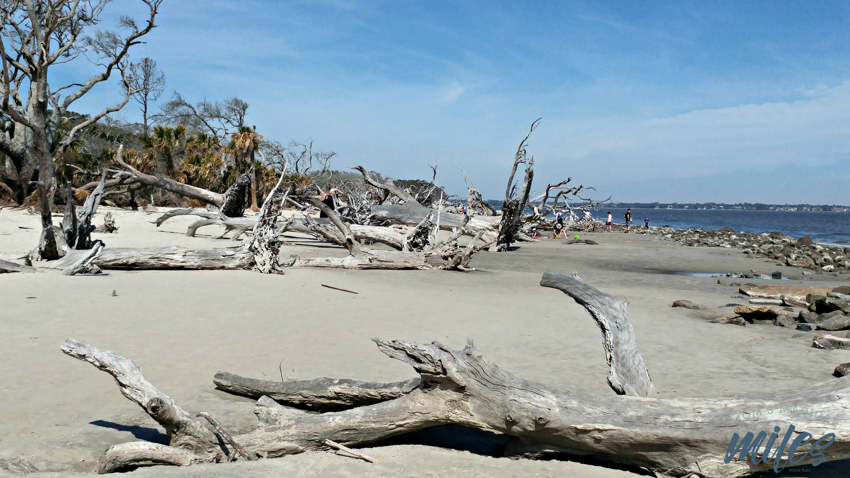 Pictures Of Jekyll Island Beach