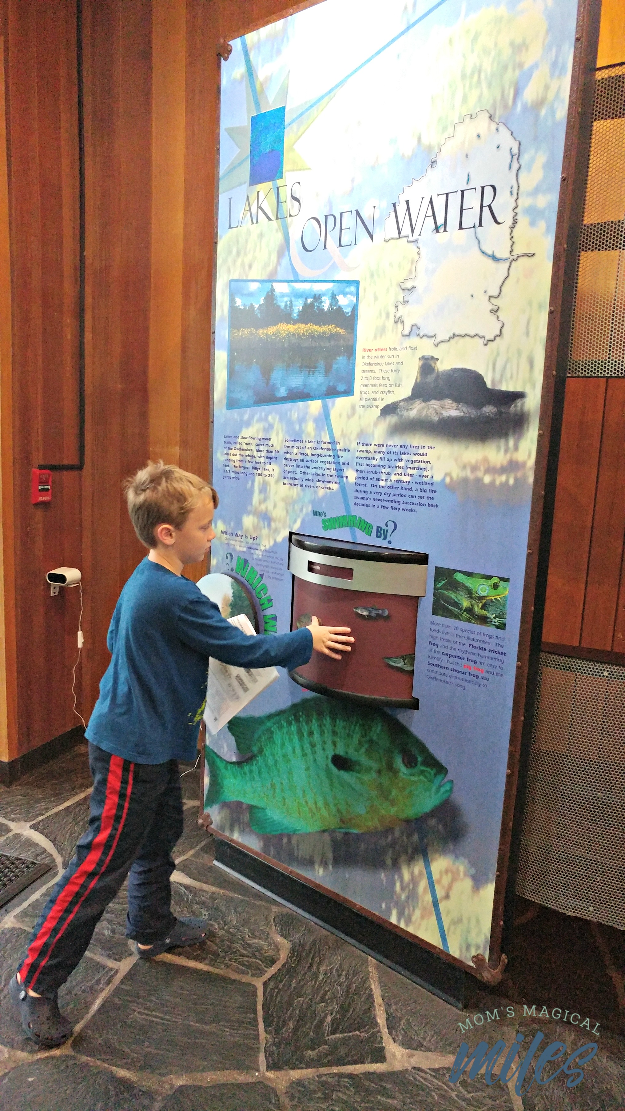 Exploring the hands-on displays in the Okefenokee National Wildlife Refuge visitor's center.