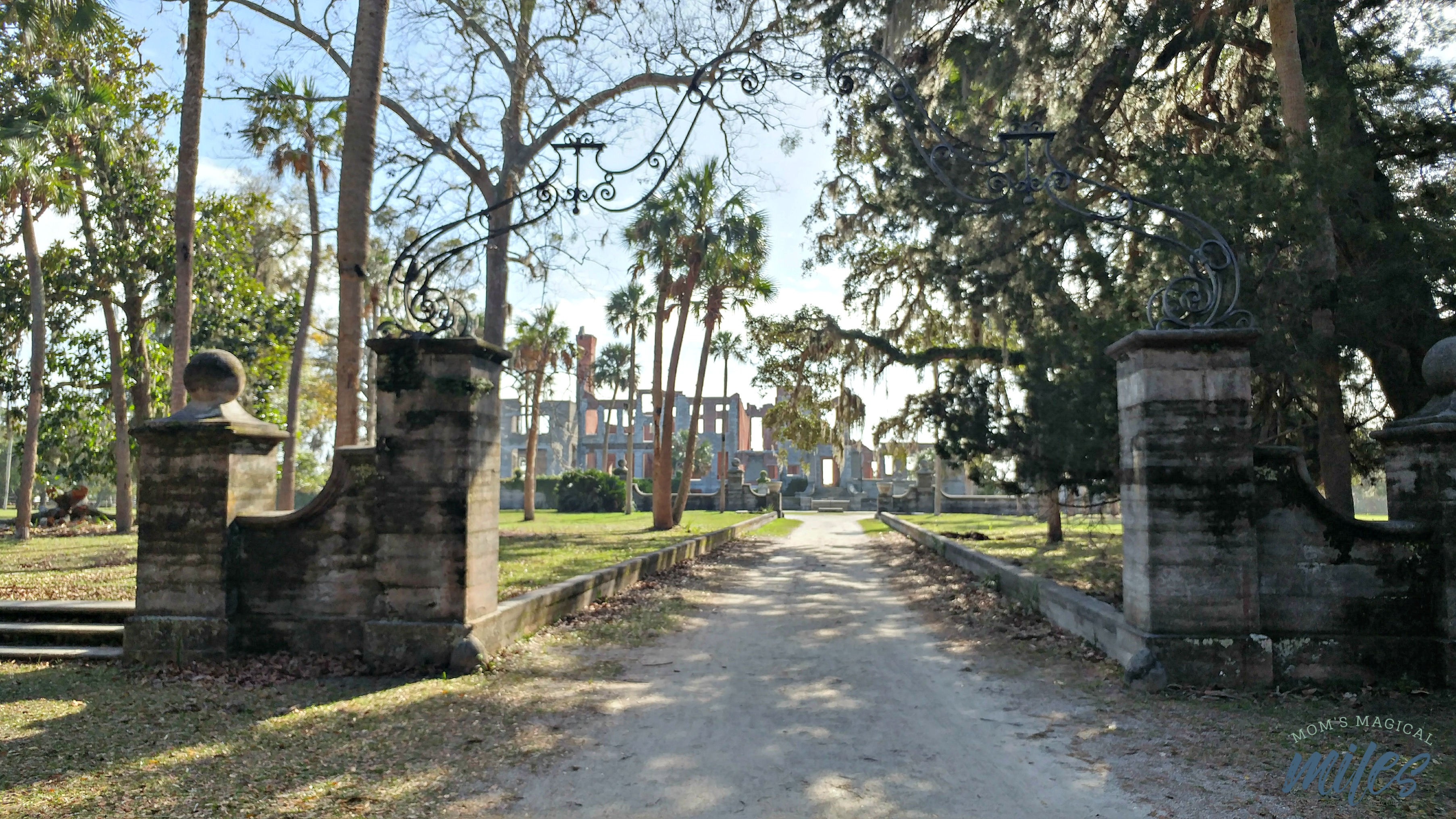 Cumberland Island on the Georgia Coast holds memories of the past. You can tour the ruins of Thomas Carnegie's mansion, Dungeness.