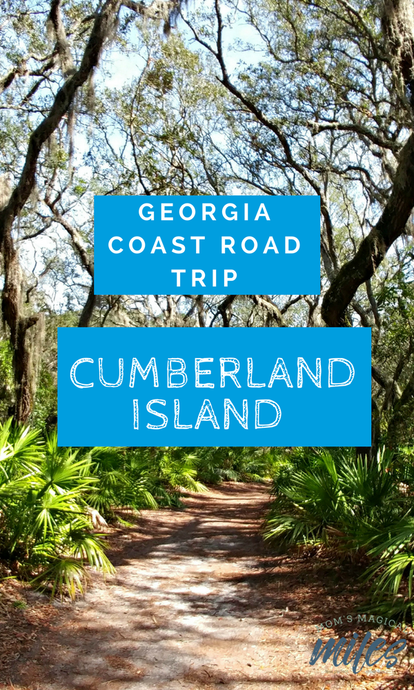 An unspoiled jewel on Georgia's coast, Cumberland Island is a bucket list trip that needs to be checked off. Hiking, biking, shelling and history await families and outdoor enthusiasts.