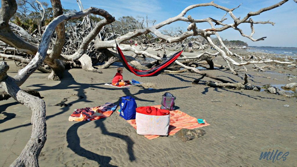 Jekyll Island's Driftwood Beach is the perfect spot for hanging out and staying awhile!