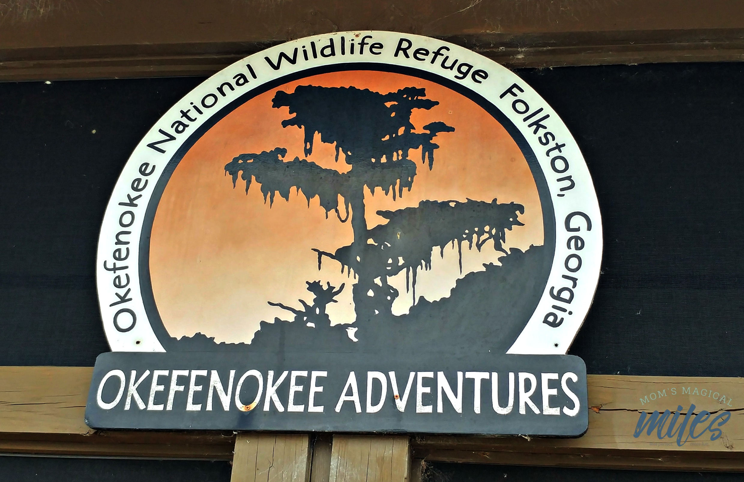 Okefenokee Adventures offers all manner of guided swamp tours, including overnights!