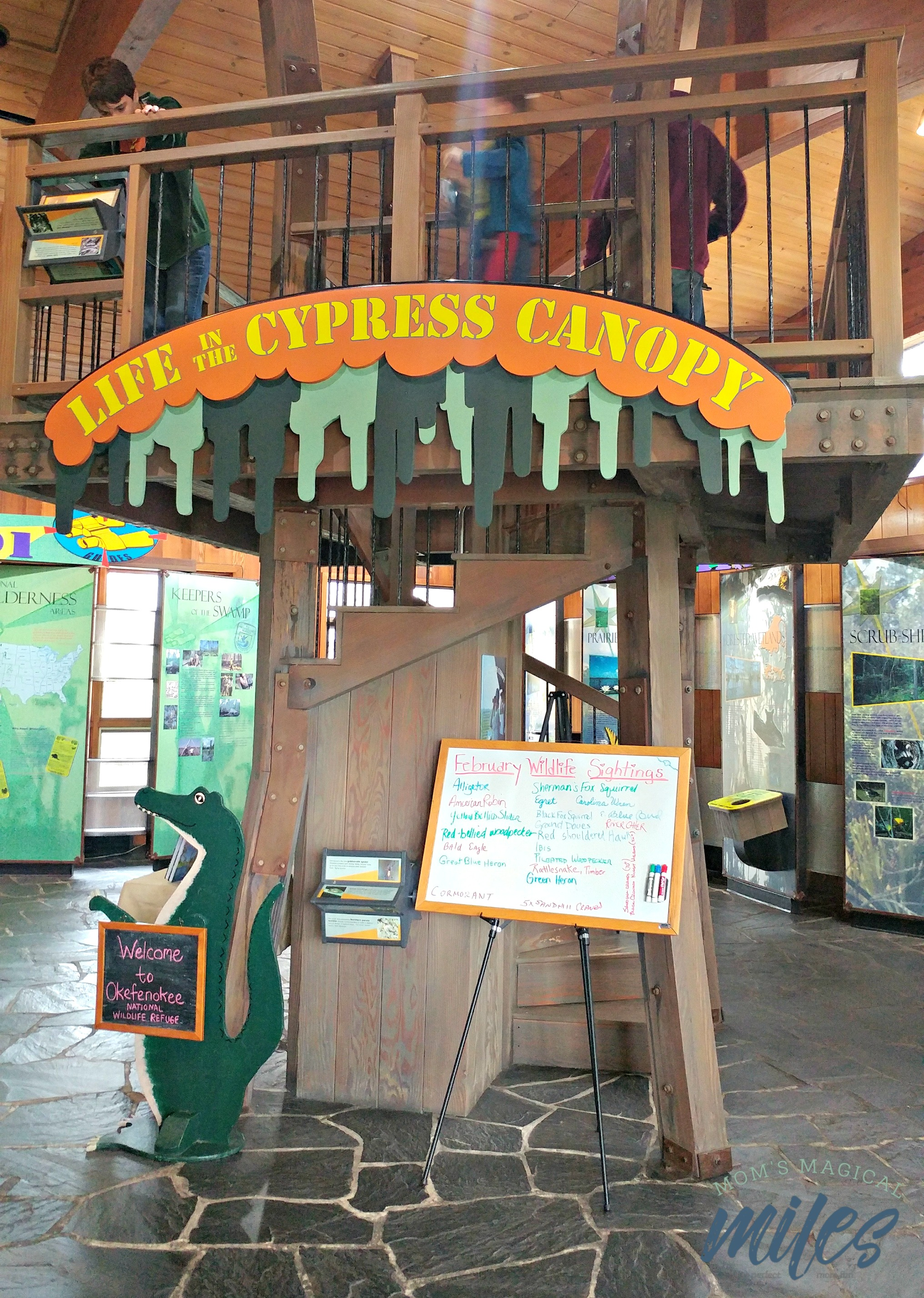 The visitor's Center at the Okefenokee National Wildlife Refuge offers information in a kid-friendly way!
