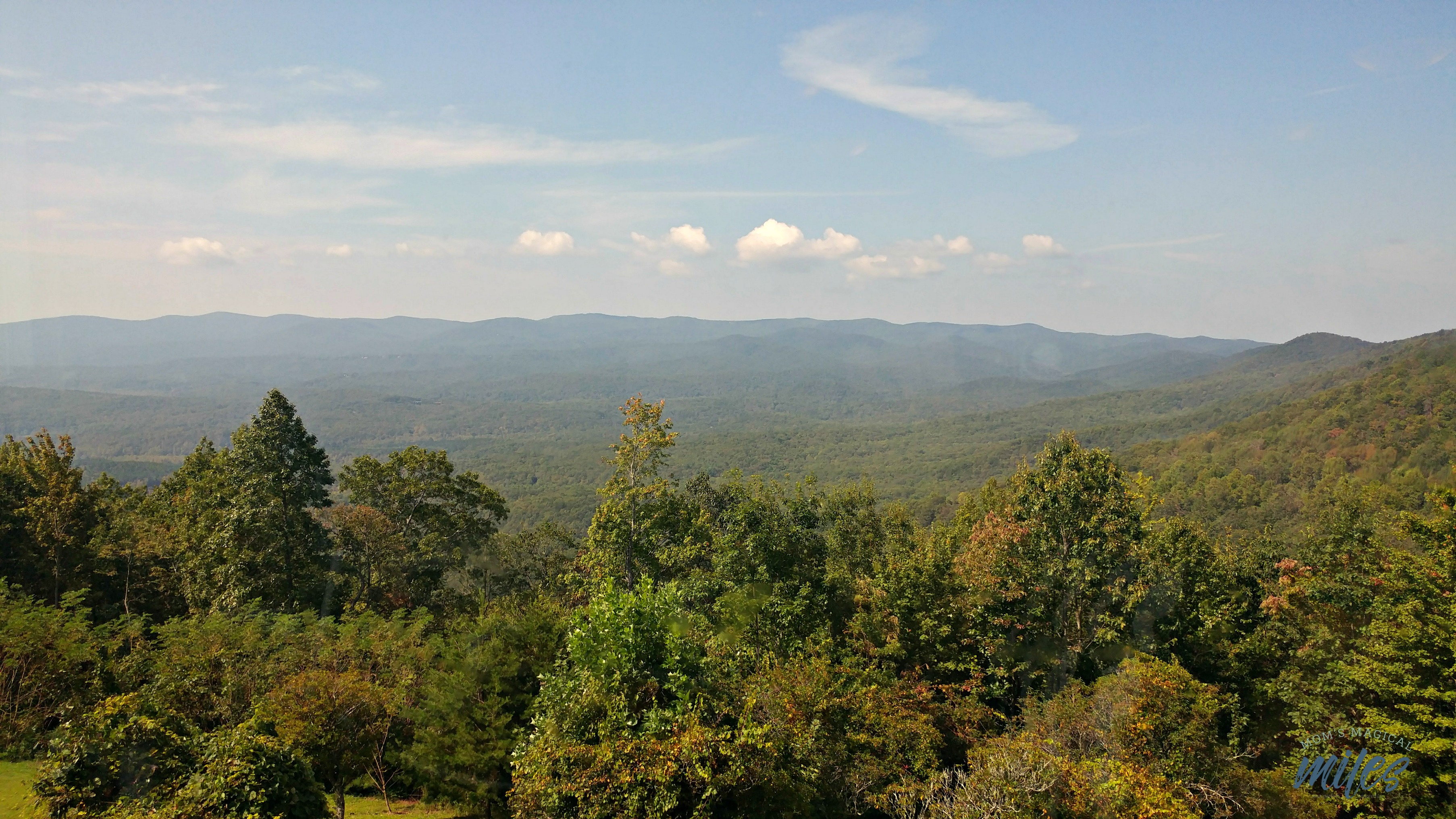Thew view from the dining room of the Amicalola Falls State Park Lodge dining room is magnificent!