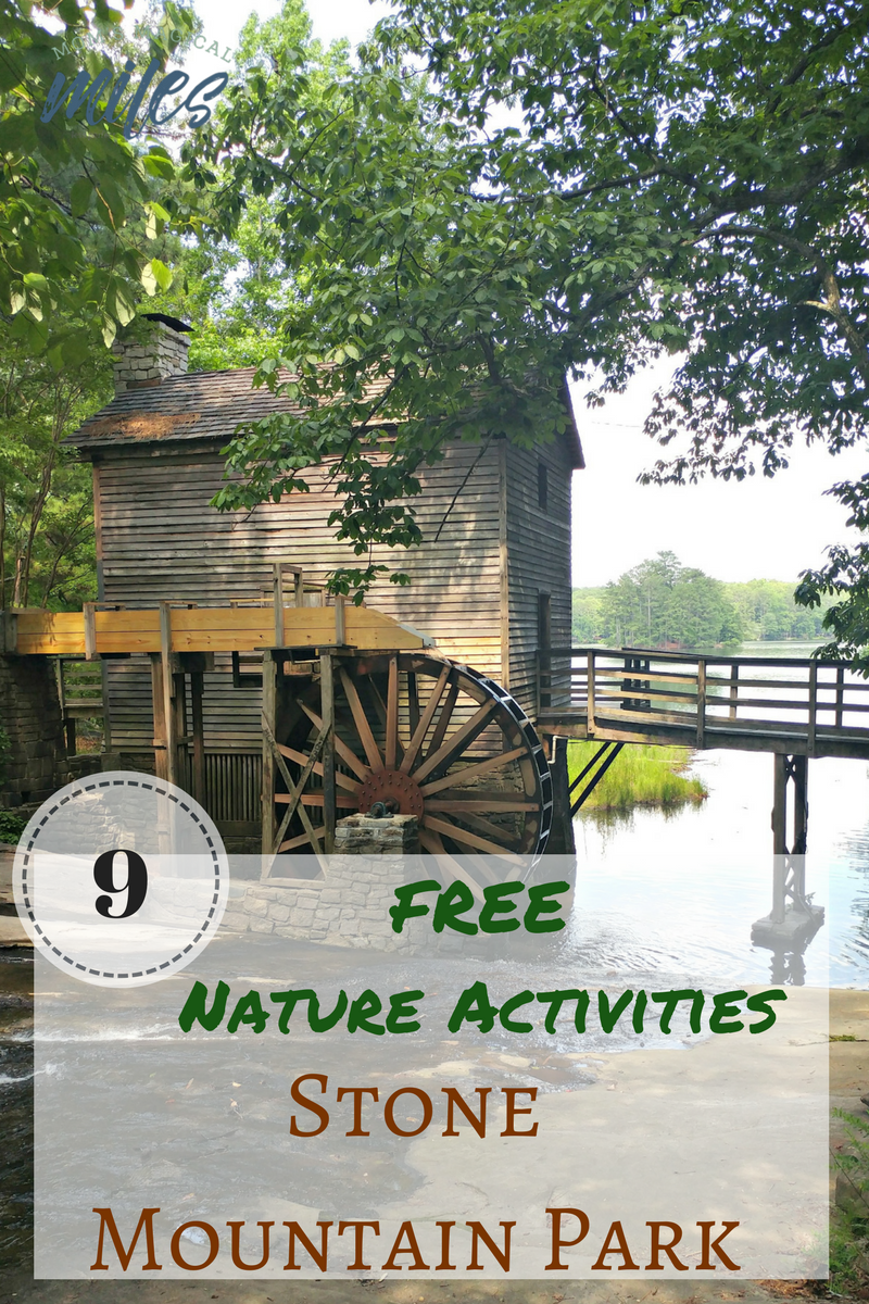 Come discover all the free things to do at Stone Mountain Park in Atlanta, GA! There are plenty of nature activities to explore and discover with the whole family.