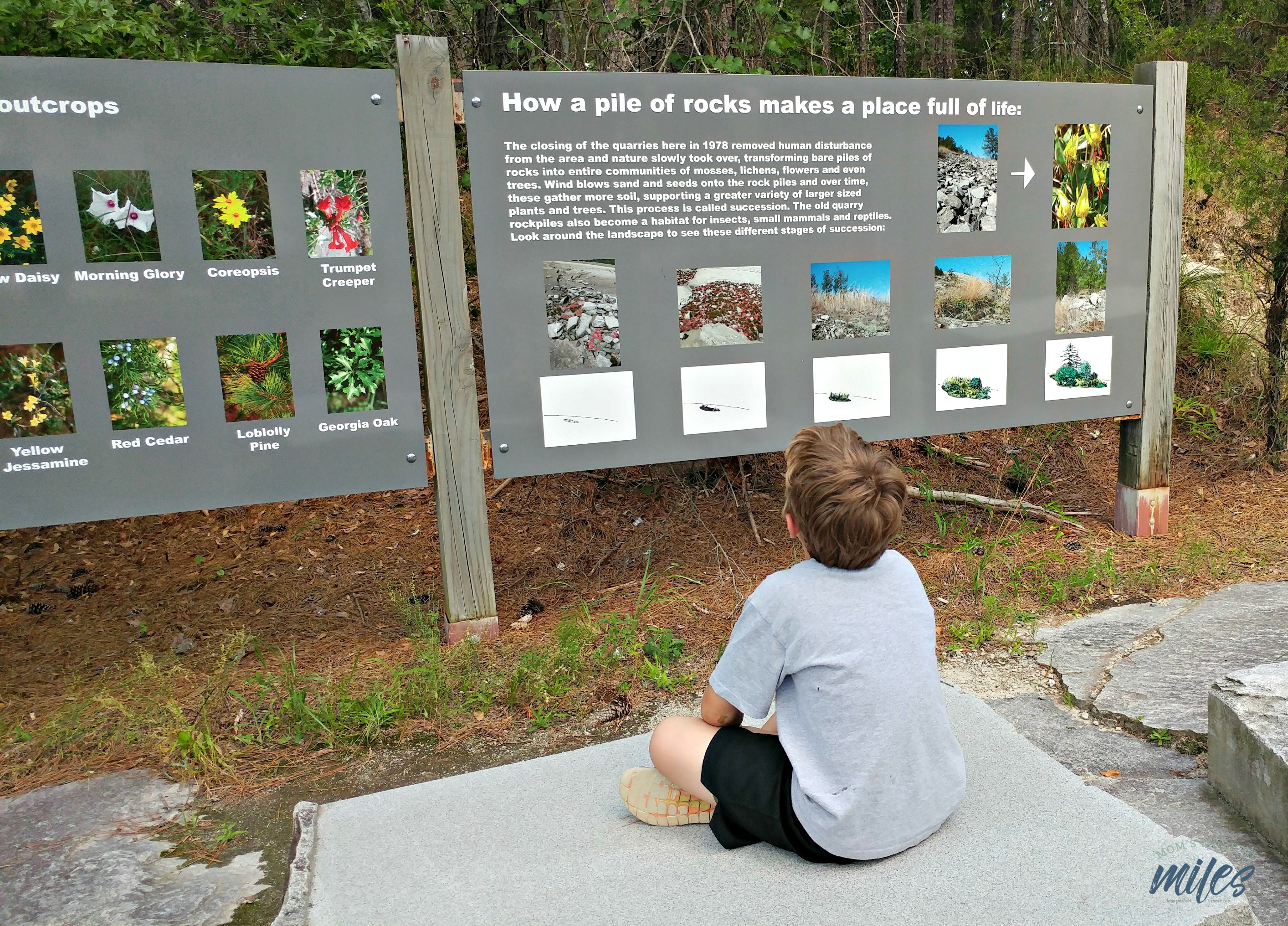 If you are looking for free things to do at Stone Mountain Park, check out the Quarry Exhibit!