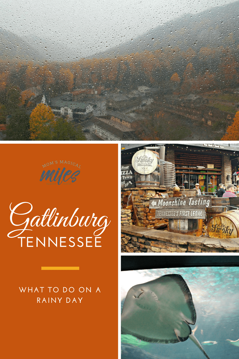 Don't let a rainy day in Gatlinburg get you down! This East Tennessee town has plenty of indoor activities to explore! #Gatlinburg #TN