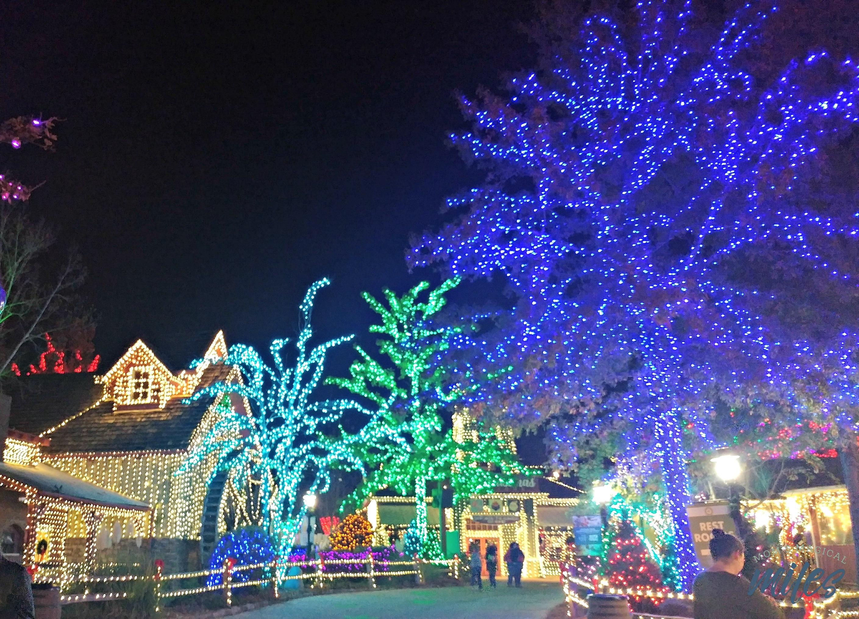 The Crossroads area of Stone Mountain Park comes alive with thousands of lights during Stone Mountain Christmas!