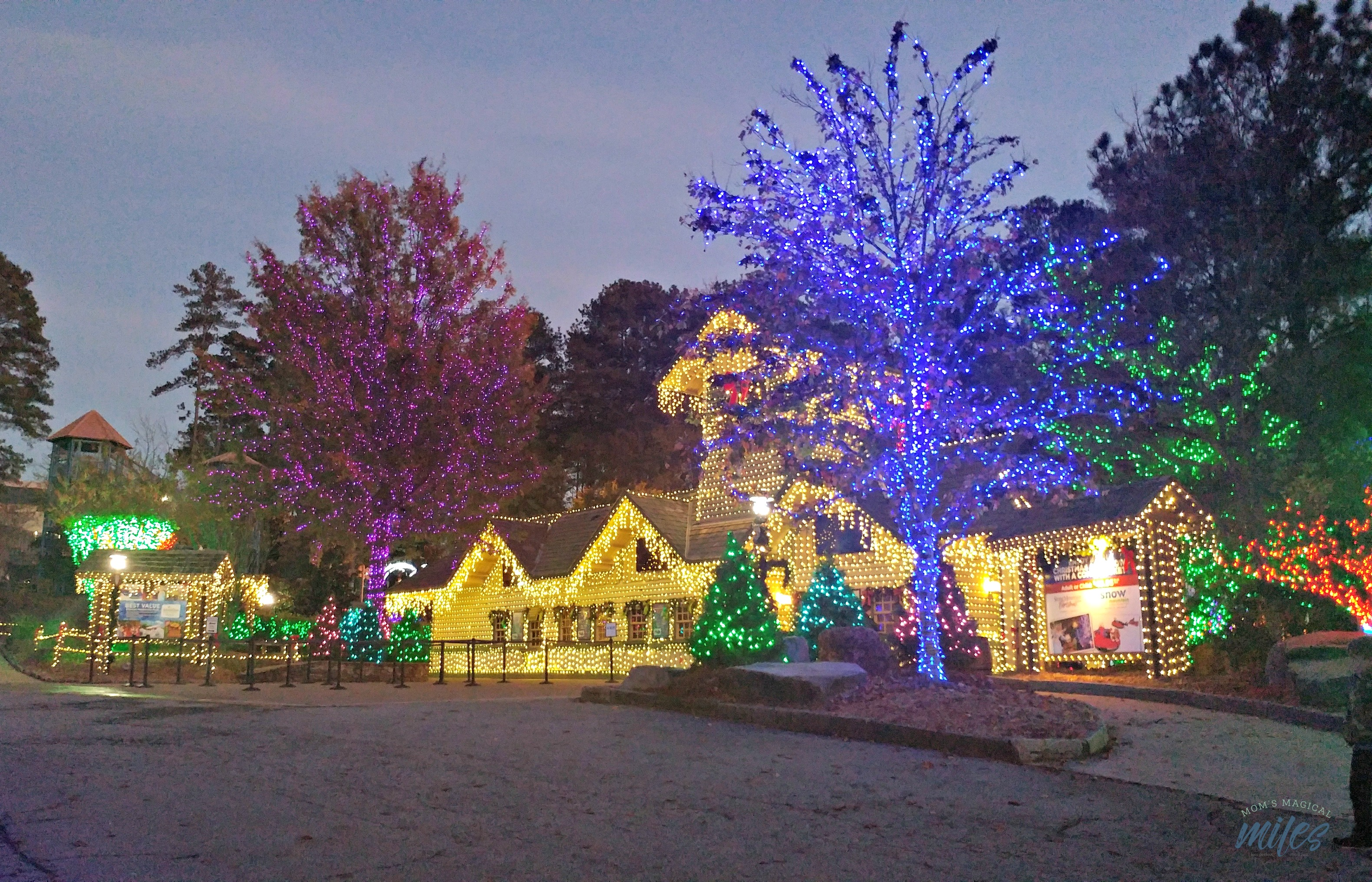 You are filled with the Stone Mountain Christmas spirit as soon as you pull in the parking lot!