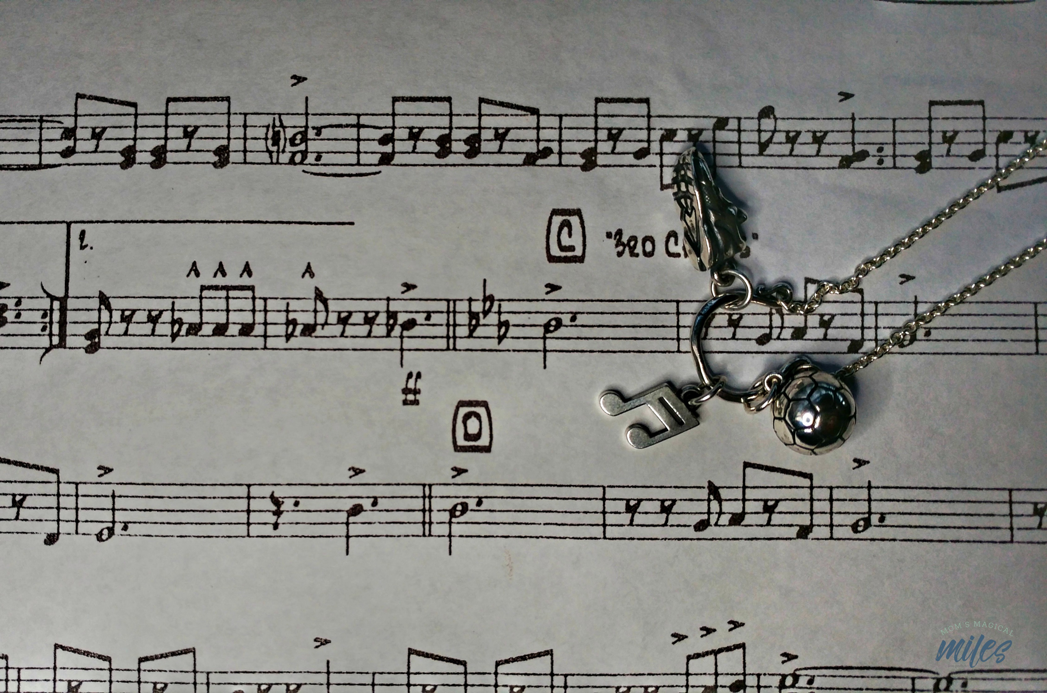 My James Avery Valentine includes a music lover. I got this pretty music note charm!